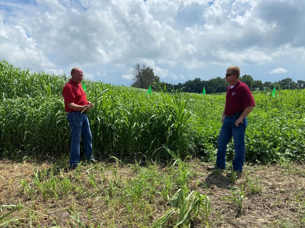 Adding manure management and cover crops helps farmers improve soil health