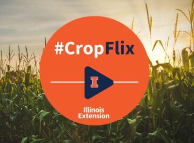 U of I's CropFlix online crop seminar brings binge-worthy info