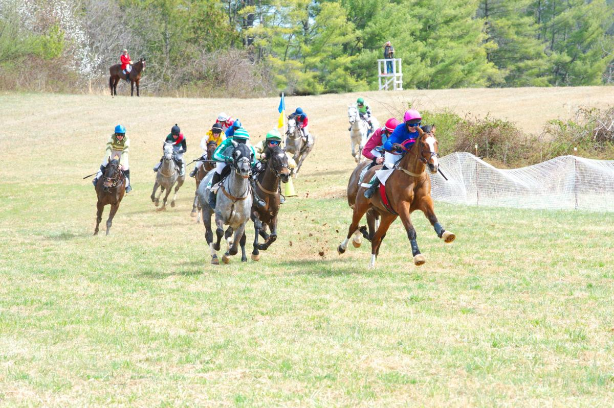 virgnina gold cup postponed