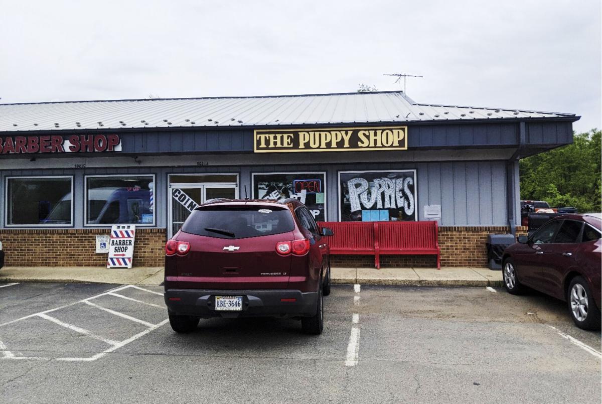 photo_ft_news_puppy shop-2 copy.jpg