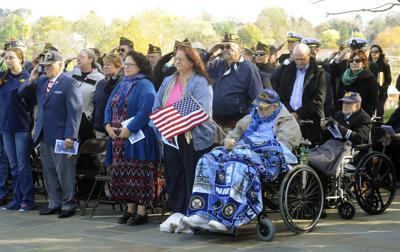 A_Veterans_Day_hospital_hill_24.JPG