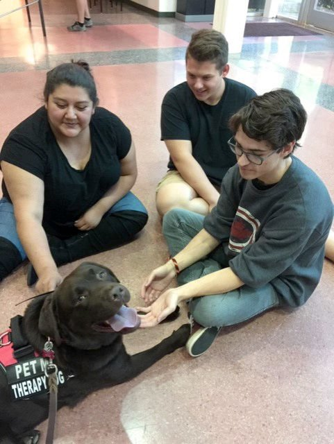 photo_ft_news_dog therapy 3_090419.jpg
