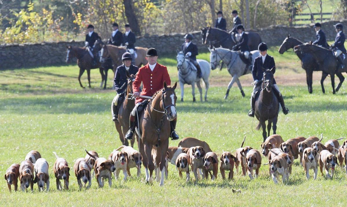 photo_ft_horse_orange county hounds 1_118120.jpg