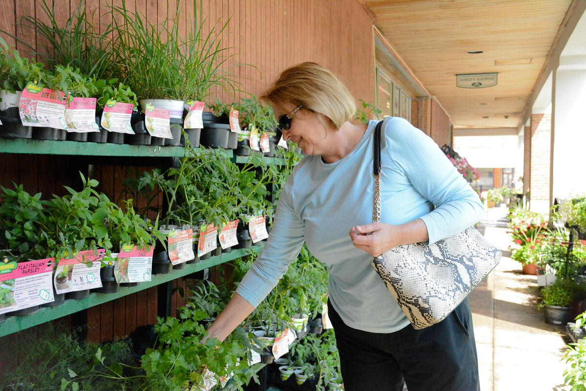 Photo_Angela Phillips at Rankins in Warrneton.jpg
