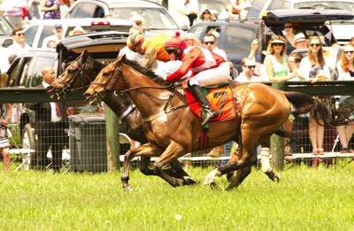 photo_ft_news_gold cup_050620.jpg