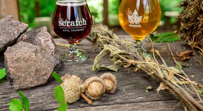 Issue no. 11: Foraged beer in southern Illinois