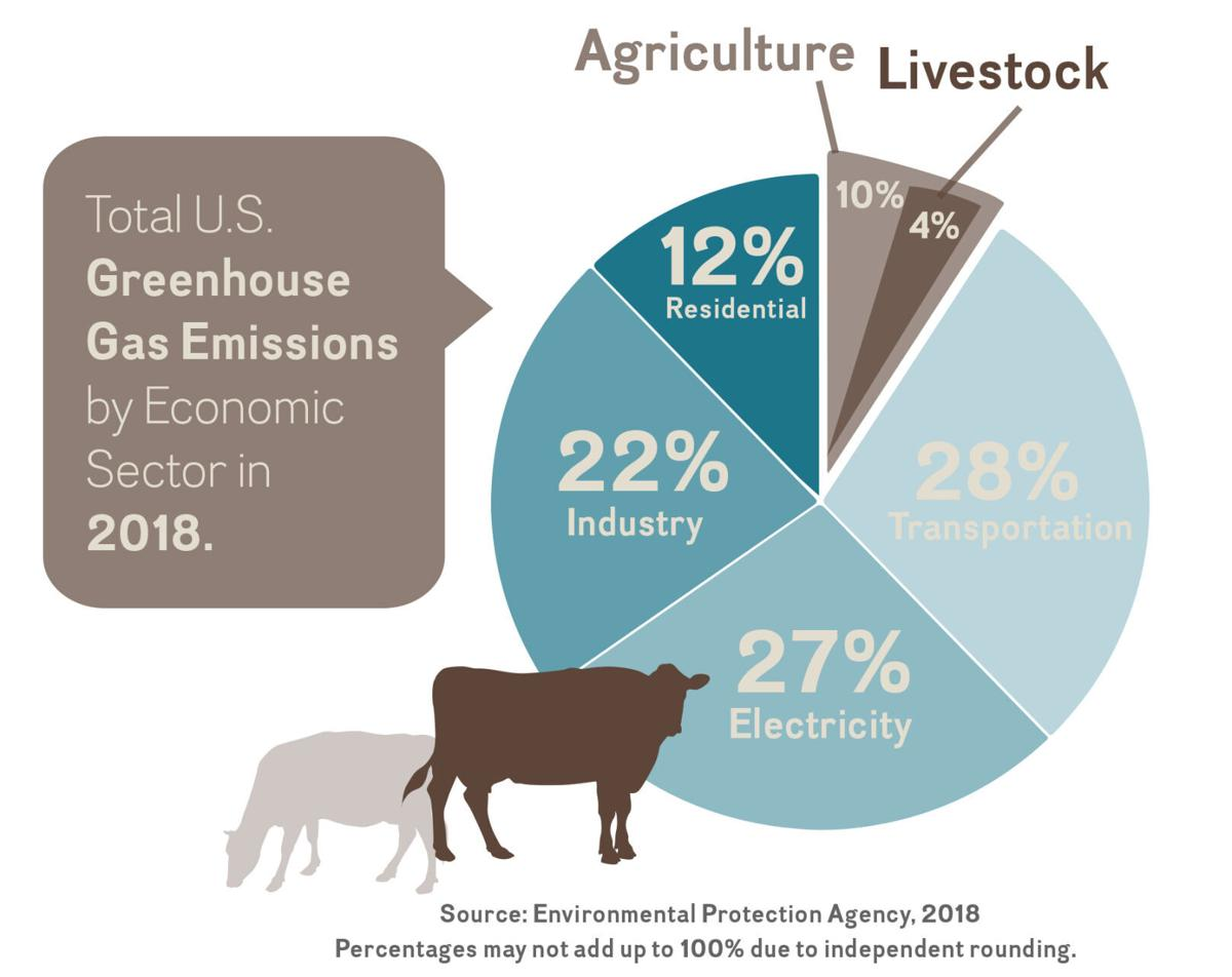 Greenhouse Gas Chart.jpg