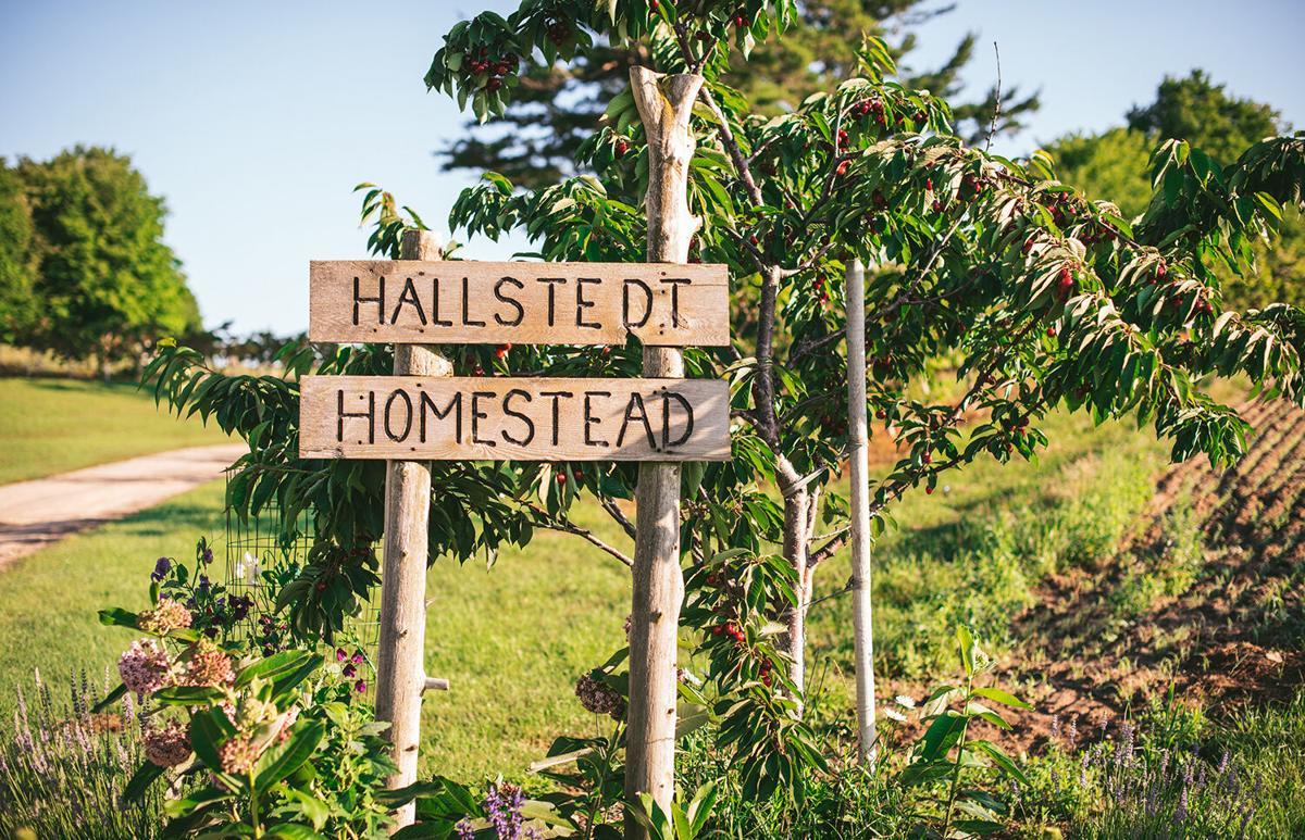 Hallstedt Cherries sign