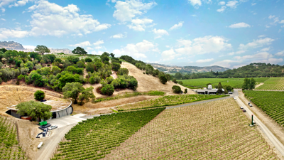 Is the future of wine organic? One Napa Valley winery thinks so.