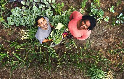Hawkins Homestead Farm is a small farm with big dreams