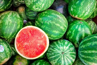 Issue no. 20: Watermelon in southern Indiana