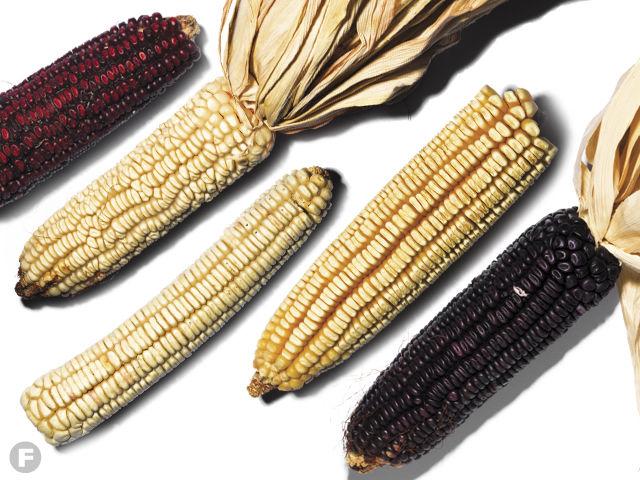 Heirloom Corns