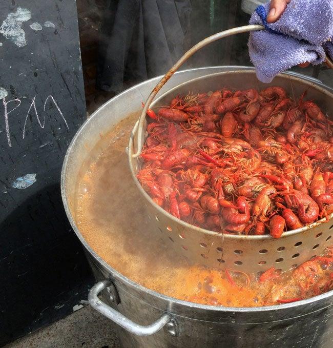 Crawfish boil lead