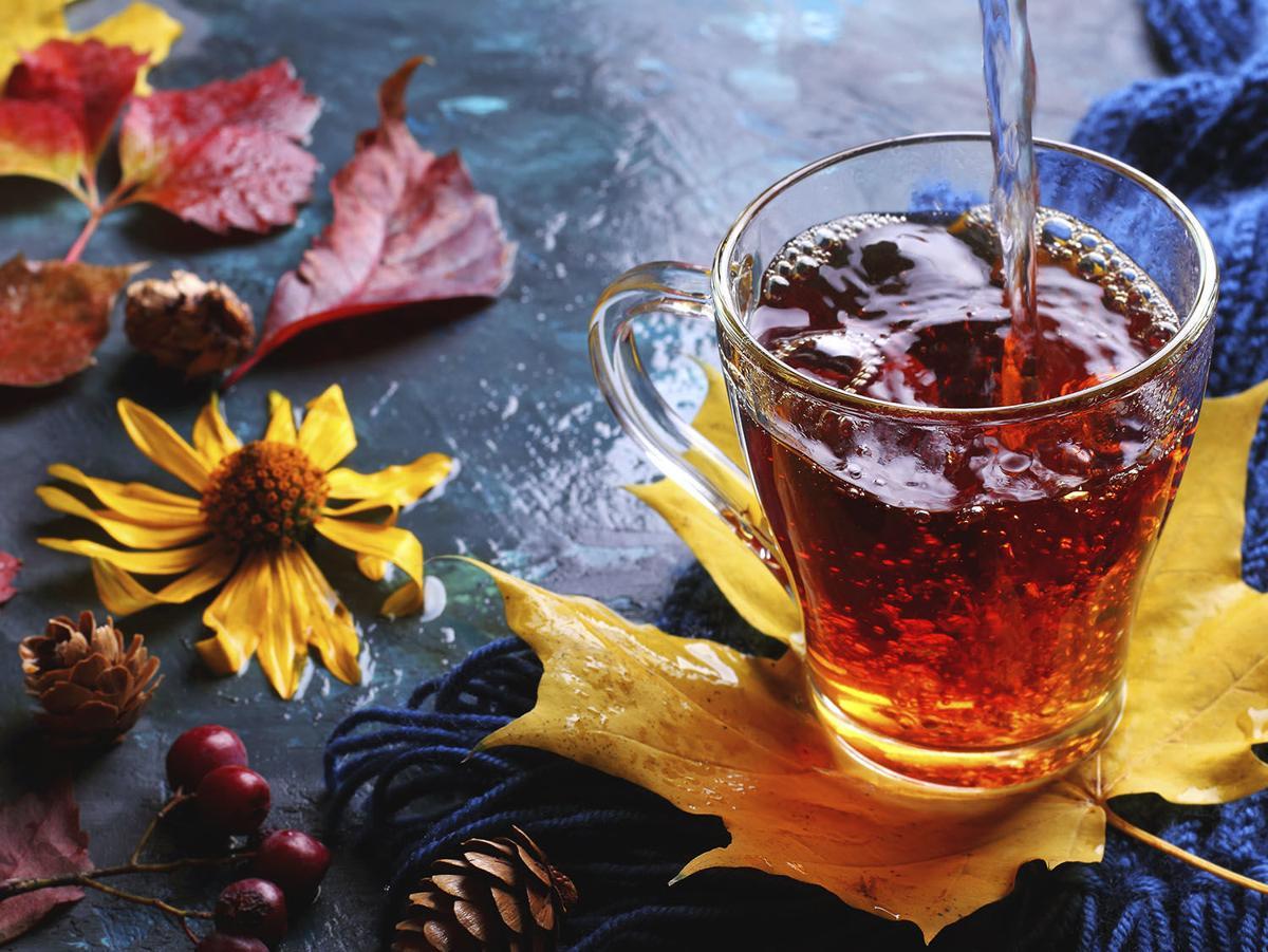 Cranberry Elderflower Spritz