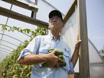 The Salad Garden Dan Kuebler