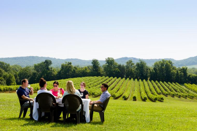 Spotlight: Noboleis Vineyards Dinner