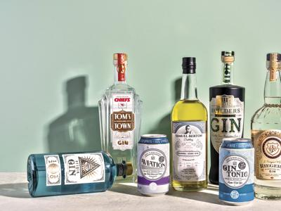 From her corner of St. Louis' South Grand, Natasha Bahrami has ignited a Midwest gin movement