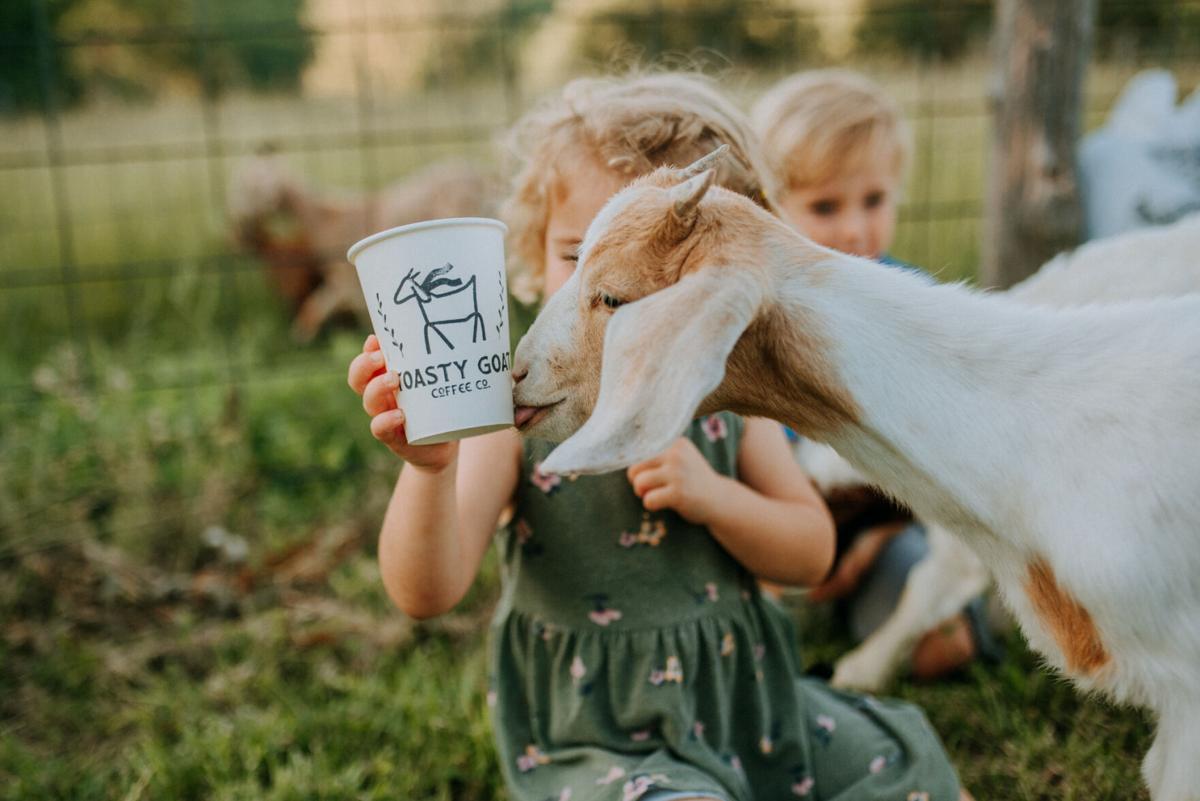 Toasty Goat Coffee Co. goat