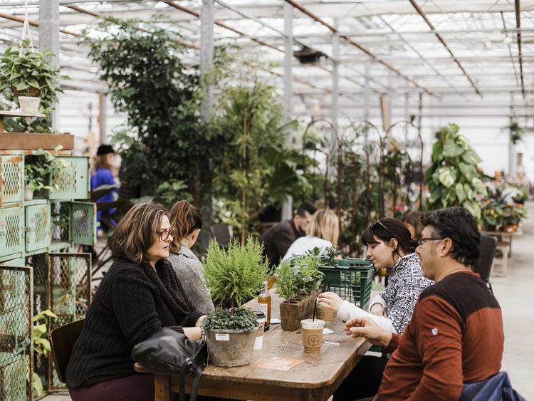 Bo Nelson S New Café Equinox Serves Up Caffeine And