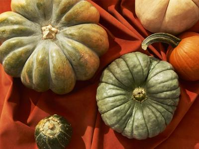 Don't know what to do with pumpkins besides carving? Let this be your guide