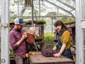Discover Nutrient-Dense Microgreens at Bee Simple City Farm in St. Louis