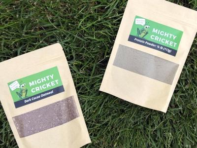 Mighty Cricket Products
