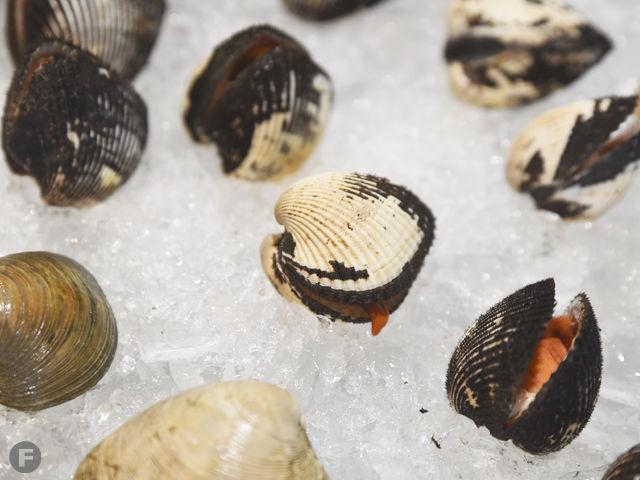 Jarocho South Seafood
