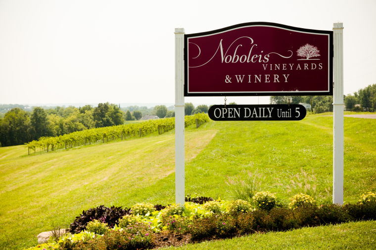 Spotlight: Noboleis Vineyards Signage