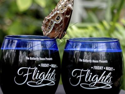 Friday Night Lights at the Butterfly House