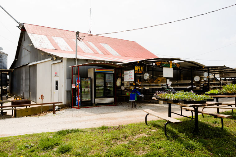 Spotlight: Geisert Farms