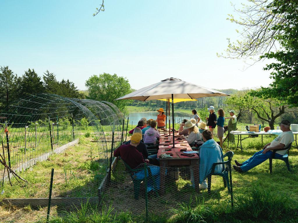 The Wine Cellar & Bistro Garden Project
