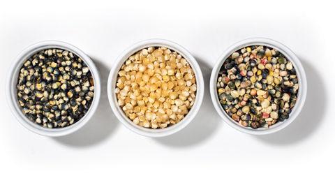 The Buffalo Seed Co. Seeds