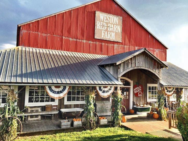 Weston Red Barn Farm Offers Fresh Eggs, Beef, Apples and ...
