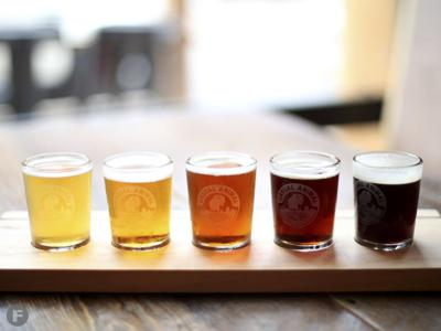 Casual Animal Brewing Co. Beers