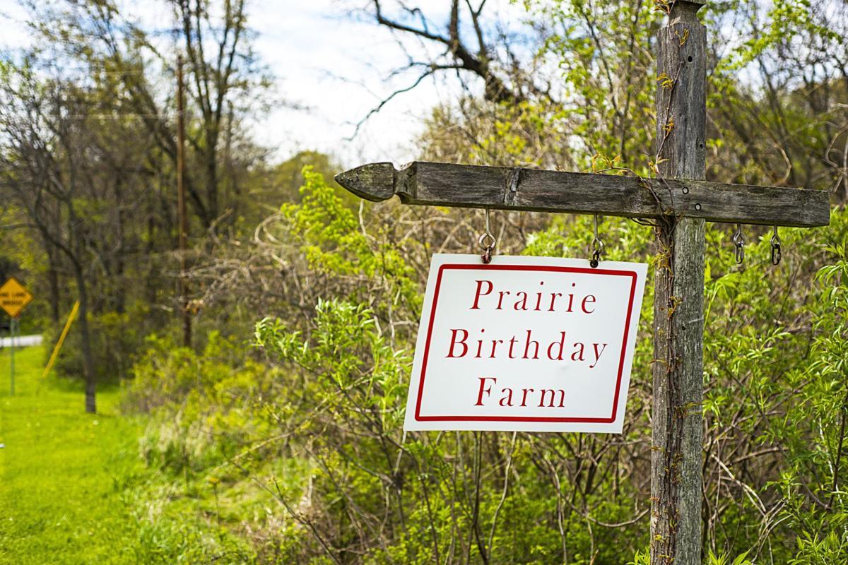 Prairie Birthday Farm