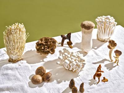 Don't Fear the Fungus: Everything You Need to Know about Buying and Cooking Mushrooms