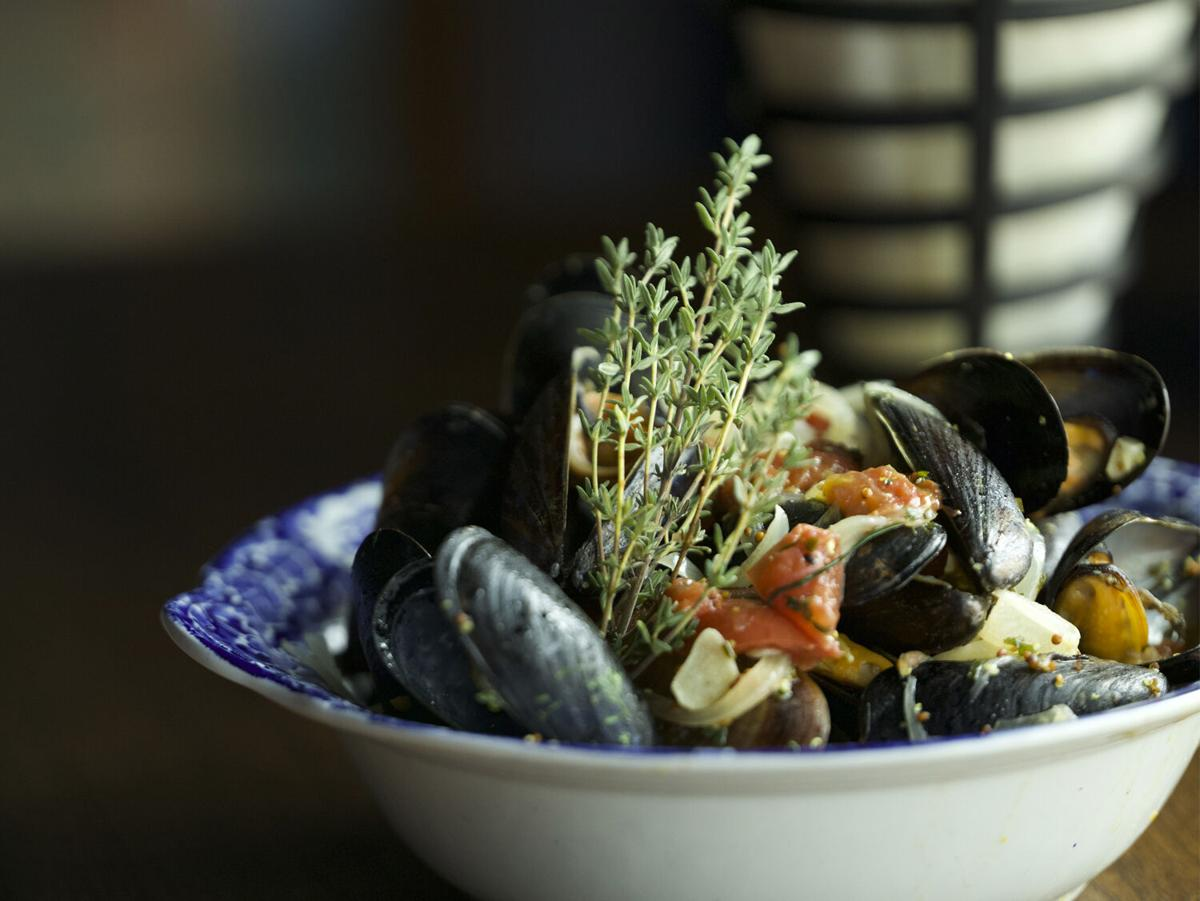 Tailleur Mussels