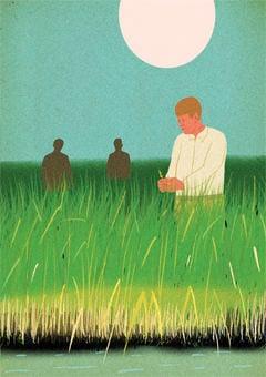 Martin Rice Co. farmer illustration