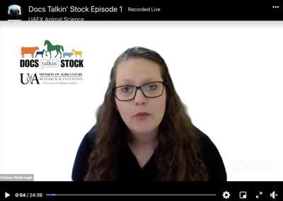 People Docs Talking Stock