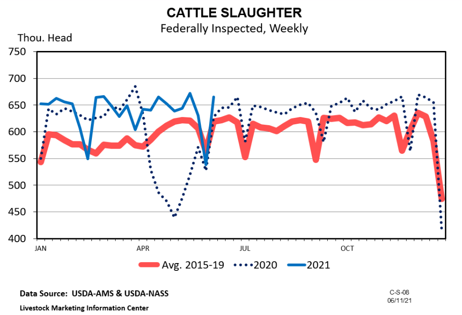 Graph Cattle Slaughter