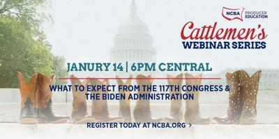 Banner NCBA Webinar