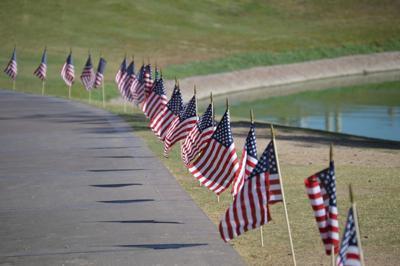 Memorial flags.jpg