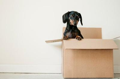 How to De-Stress When Moving Home