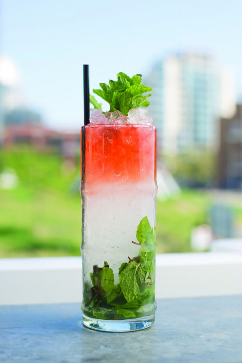 San Diego's Most Beautiful Cocktails