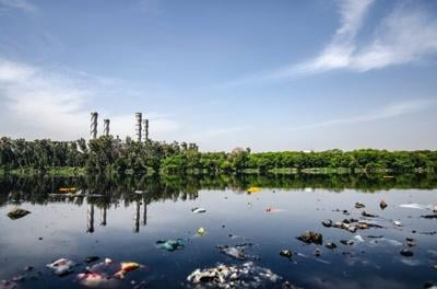 Waste and Pollution: How You Can Contribute to Sustainability