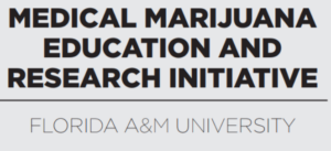 Black physicians discuss benefits of medical marijuana