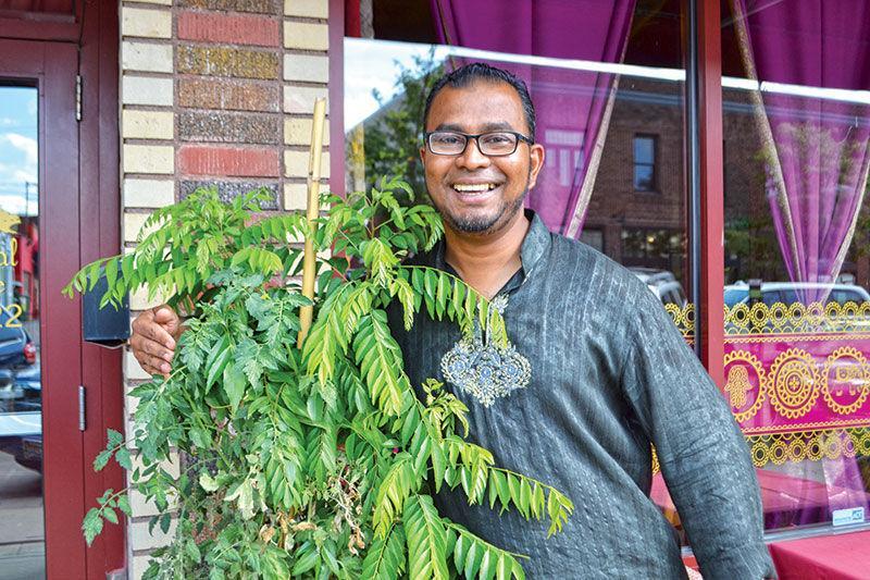 www.foodservicenews.net: At Gandhi Mahal, a Basement Garden Feeds a Village