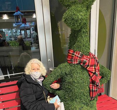 Nancy reindeer