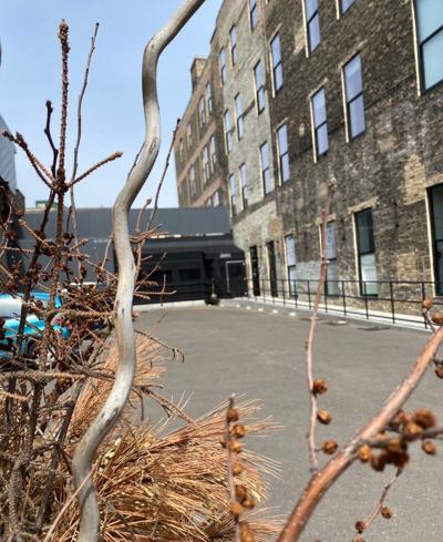 James Beard Foundation Taps Five Locals