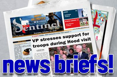 News brief banner 2019